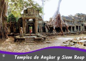 Guía completa de los templos de Angor y Siem Reap: cuántos días ir, qué ver, presupuesto, itinerarios, dónde dormir, cómo llegar y mucho más